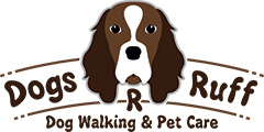 Dog Walking Service in Surrey